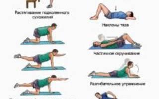 Упражнения для спины при грыжах позвоночника (видео, фото)
