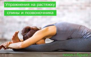 Комплекс упражнений для растяжки позвоночника и спины