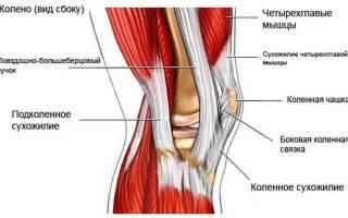 Боль под коленом сзади: причины, почему тянет под коленкой и ниже икры при разгибании и сгибании