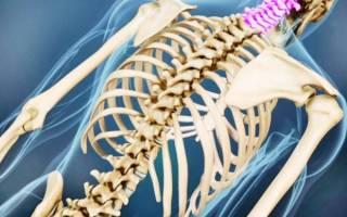 Реабилитация после травмы позвоночника