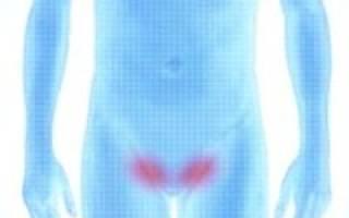 Упражнения при паховой грыже у мужчин: показания и противопоказания, общие правила, упражнения до и после операции, профилактика (комплекс упражнений)