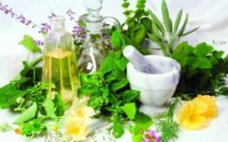 Травы для лечения остеохондроза поясничного отдела позвоночника