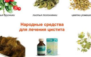 Народные средства для лечения цистита