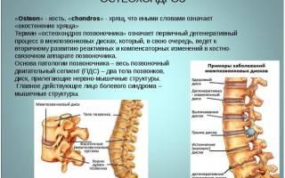 Почему болит позвоночник и как его лечить
