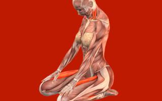 Ходьба на коленях — даосская практика